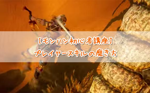 mh4g_player_skill